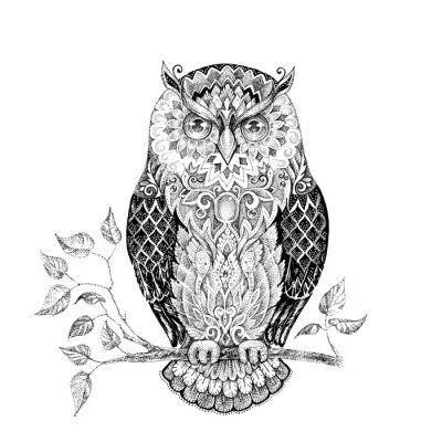 Sticker Drawing owl with beautiful patterns