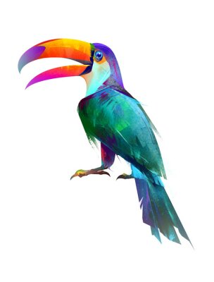 Sticker drawn isolated bright bird sitting Toucan side
