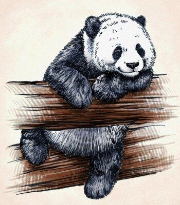 Sticker engrave ink draw panda illustration