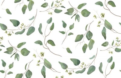 Sticker Eucalyptus different tree, foliage natural branches with green leaves seeds tropical seamless pattern, watercolor style. Vector decorative beautiful cute elegant illustration isolated white background