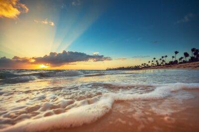 Sticker Exotic Beach in Dominican Republic, Punta Cana