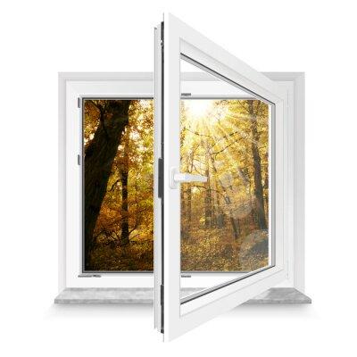 Sticker Fenster 28