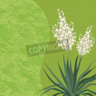 Sticker Floral background with Yucca flowers and leaves and abstract pattern. Vector