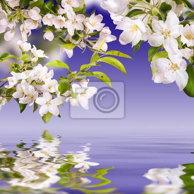 Flower background_178