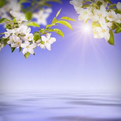 Flower background_2