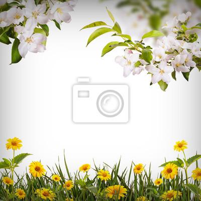 Flower background_29