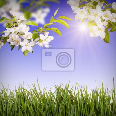 Flower background_3