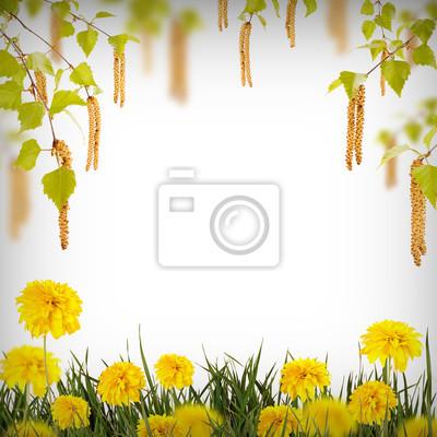 Flower background_31