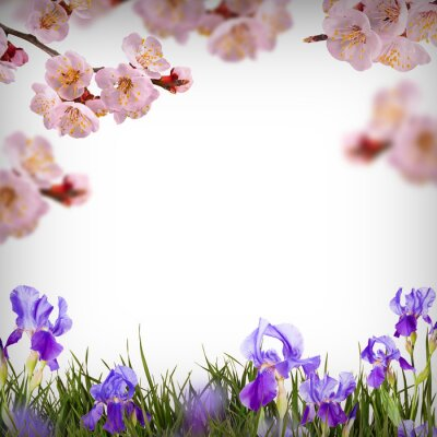 Flower background_35
