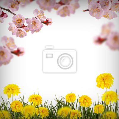 Flower background_37