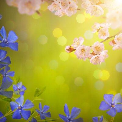 Flower background_55
