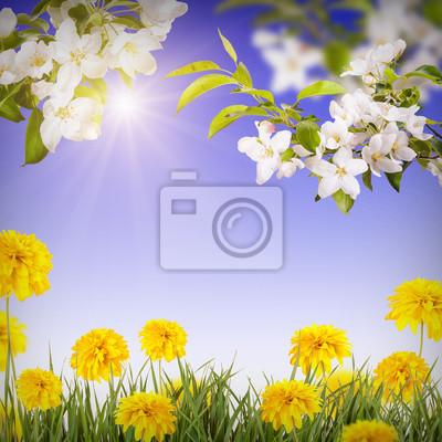 Flower background_6