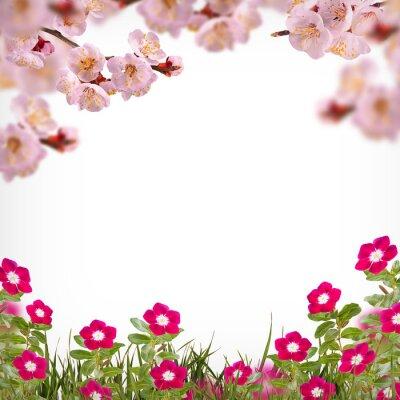Flower background_76