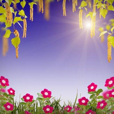 Flower background_79