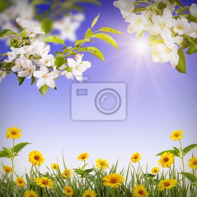 Flower background_8