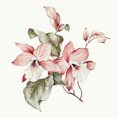 Sticker Flowers watercolor illustration.Manual composition.Big Set watercolor elements.