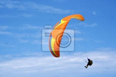 Sticker Flying