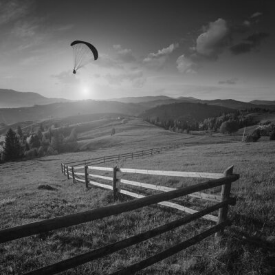 Flying in a light of sunset. Black and white