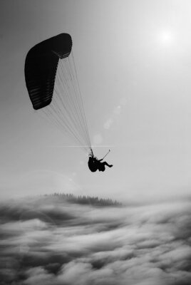 Flying paraglide. Black and white