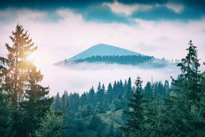 Sticker Foggy forest with distant mountain peak