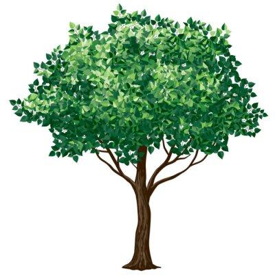 Sticker Foliage tree