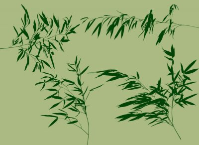 Sticker four green bamboo branches set illustration