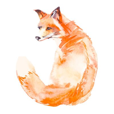 Sticker Fox isolated on white background. Watercolor. .