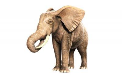 Sticker Freigestellter Elefant am Fressen (gerendertes Bild)