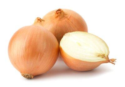 Sticker Fresh bulbs of onion on a white background