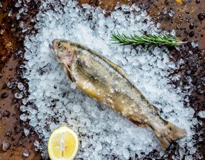 Sticker fresh fish