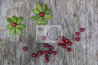 Sticker Fresh ripe cranberries with leaves lying on the old vintage wooden table in a shape of chamomile flower. Background for nature themes. Horizontal overhead view.