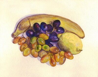 Sticker Fruit, grapes, lemon, banana. Watercolor painting