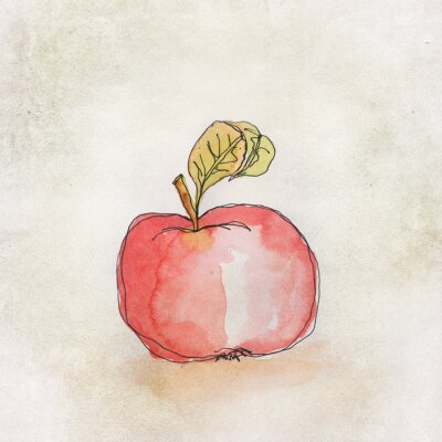 Sticker Fruit illustration with watercolor