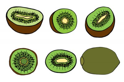 Sticker fruit kiwi