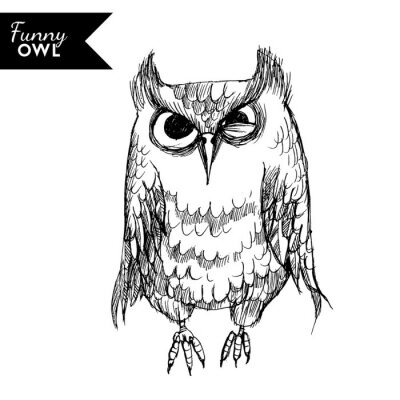 Sticker funny owl character