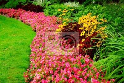 Sticker Garden