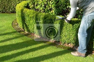 Sticker gardener