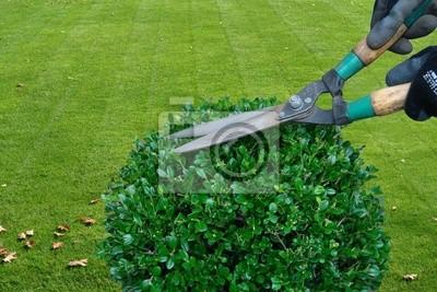 Sticker gardening