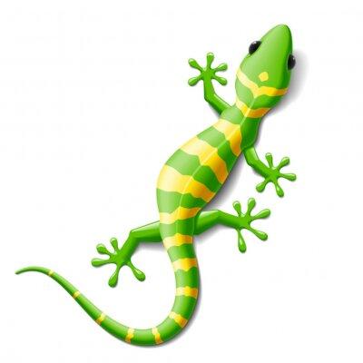 Sticker Gecko