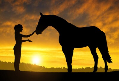 Sticker Girl with a horse at sunset