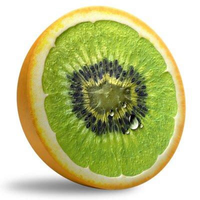 Sticker GMO Concept.
