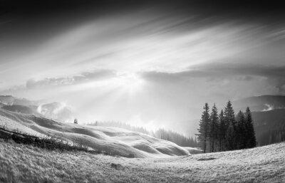 Gold Carpathian light b&w