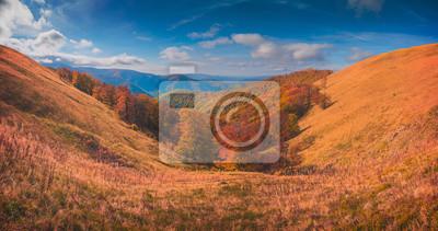 Golden autumn in a Carpathian mountains