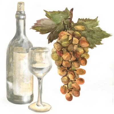 Sticker Grapes, wine bottle, white wine in a glass wine glass. Watercolor painting