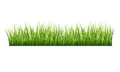 Sticker Grass