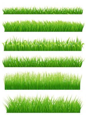 Sticker Green grass borders set on white. Vector illustration