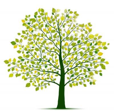 Sticker green tree isolated