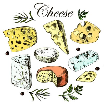 Sticker hand drawing set with different cheeses