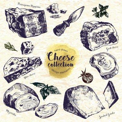 Sticker Hand Drawn Cheese Set