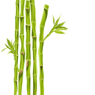Sticker Hand-drawn green bamboo bacground with space for text